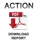 ACTION report: PDF download
